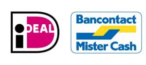download-logo-ideal-en-mister-cash